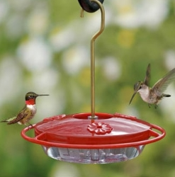 Wilco Product Category Hummingbird Food & Feeders